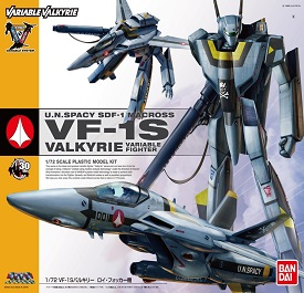 VF-1S Valkyrie Roy Fokker Variable Fighter
